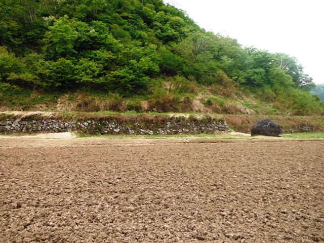 城坂城(栄村) (2)