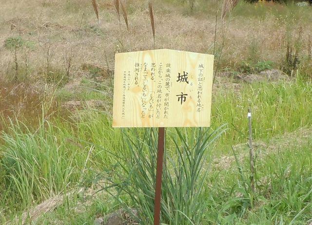 設楽城(三河) (28)