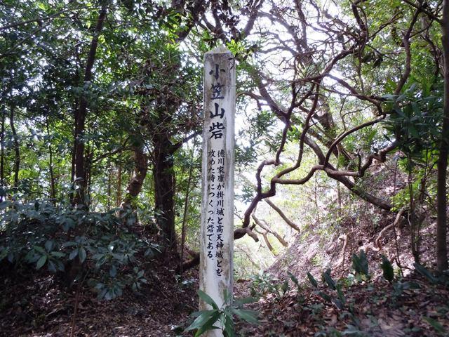 小笠山砦 (9)