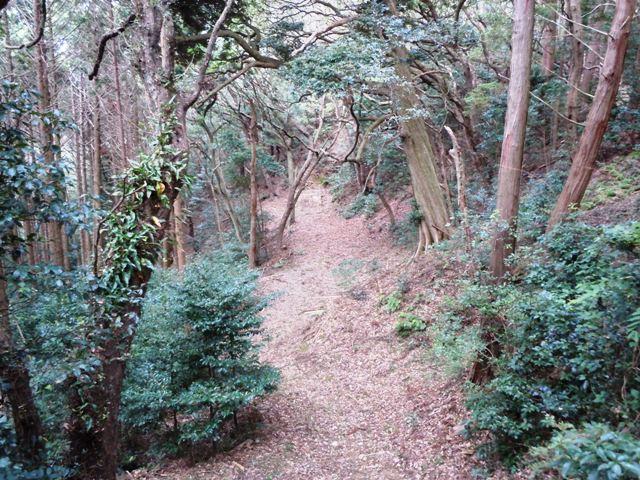 小笠山砦 (29)