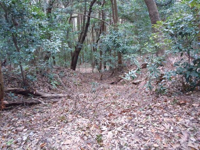 小笠山砦 (27)