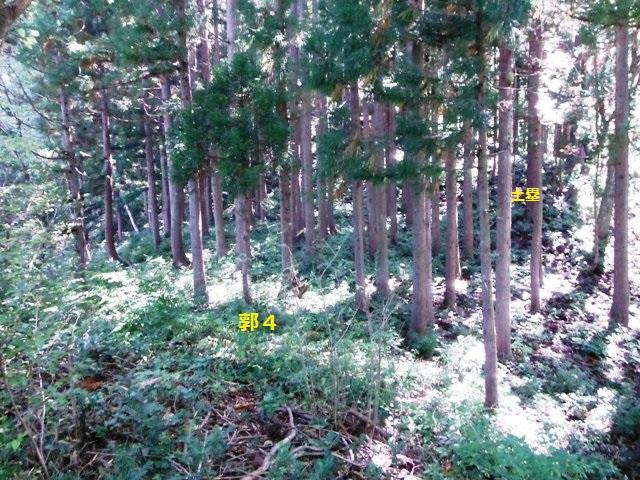 稲葉城(小谷村) (23)