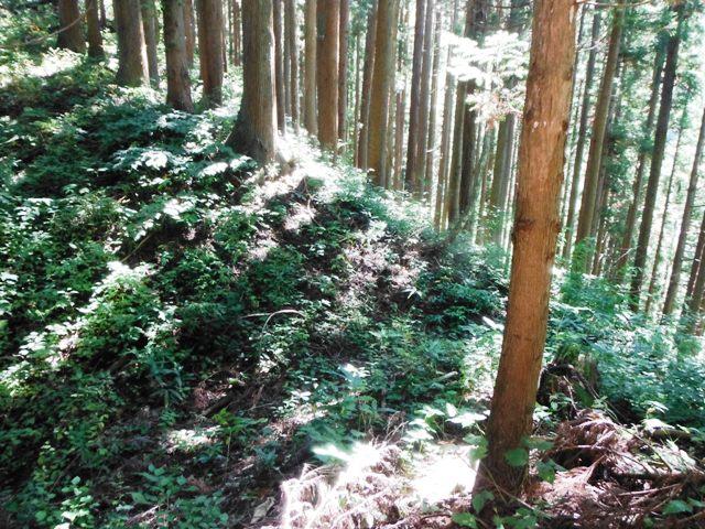 稲葉城(小谷村) (33)