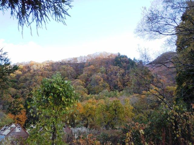 飯田城遠景