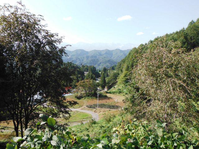 立屋城(小川村) (61)