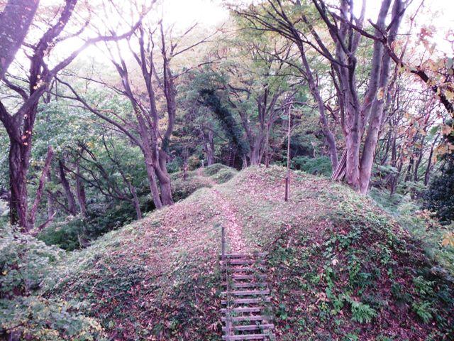 鳥坂城(妙高市) (75)