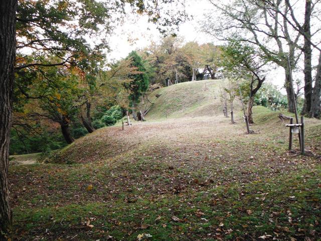 鳥坂城(妙高市) (95)