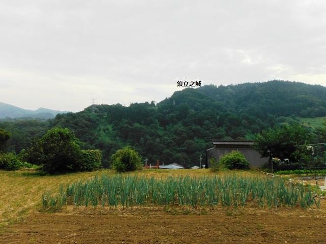 須立之城遠景
