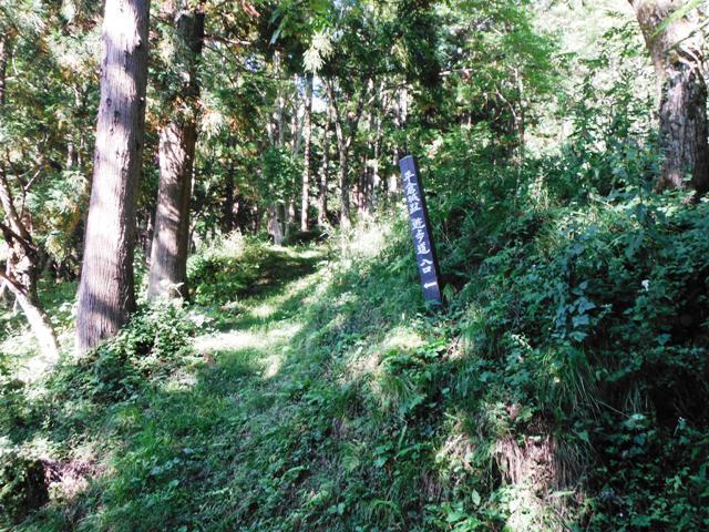 平倉城(小谷村) (10)