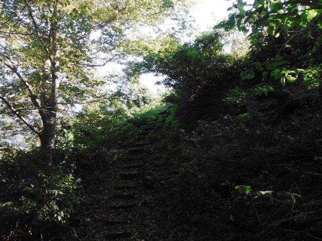平倉城(小谷村) (15)