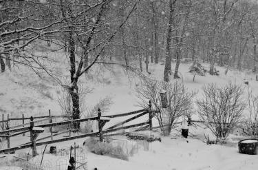 雪のお彼岸