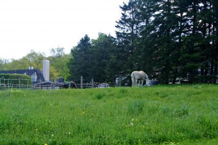 屋敷内の牧場