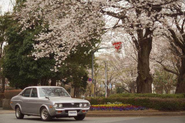 マツダルーチェカスタムGR2・ロータリーとグリーンベルトの桜
