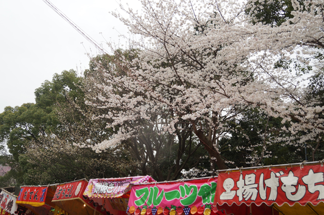 靖国神社の参道