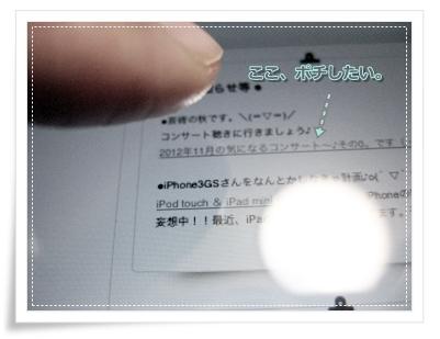 iPad mini ポチ図