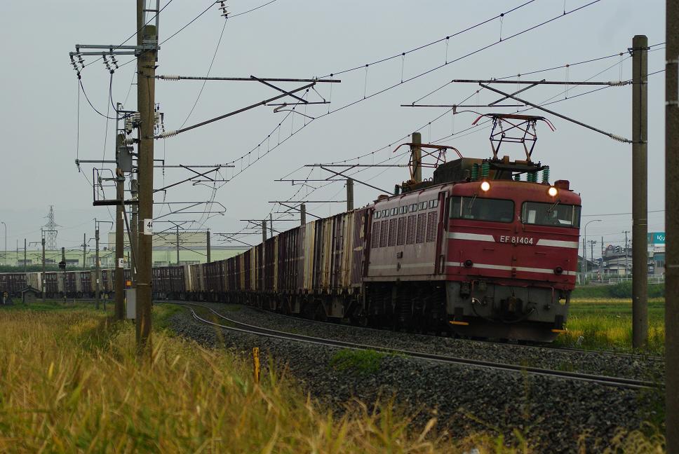 DSC02040.jpg