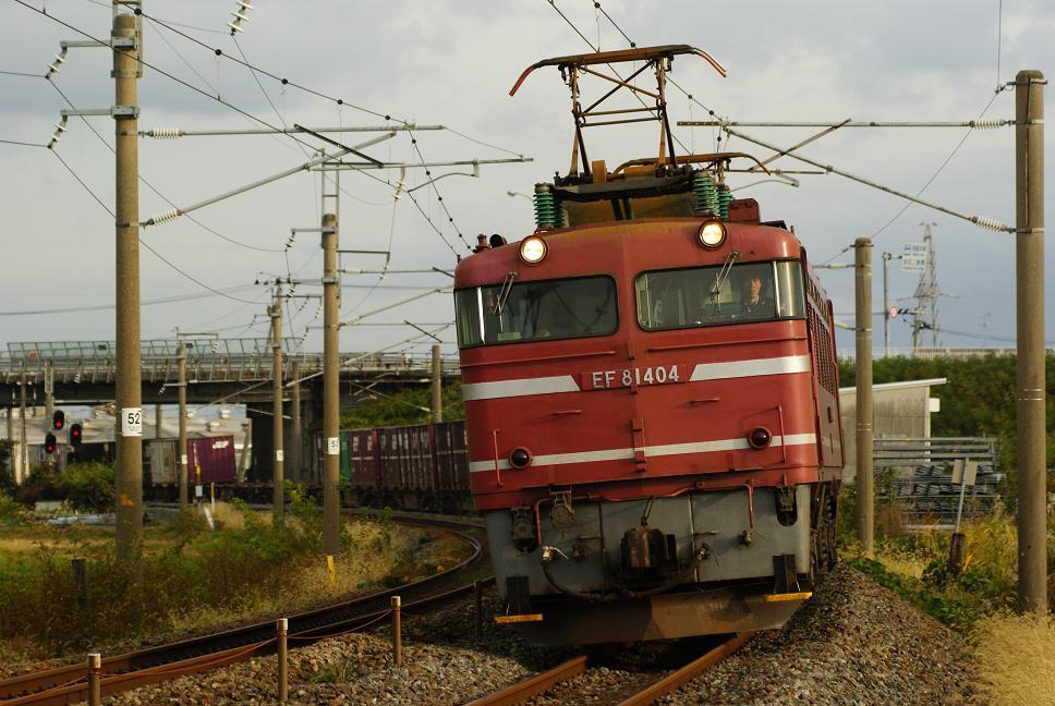 DSC02535.jpg