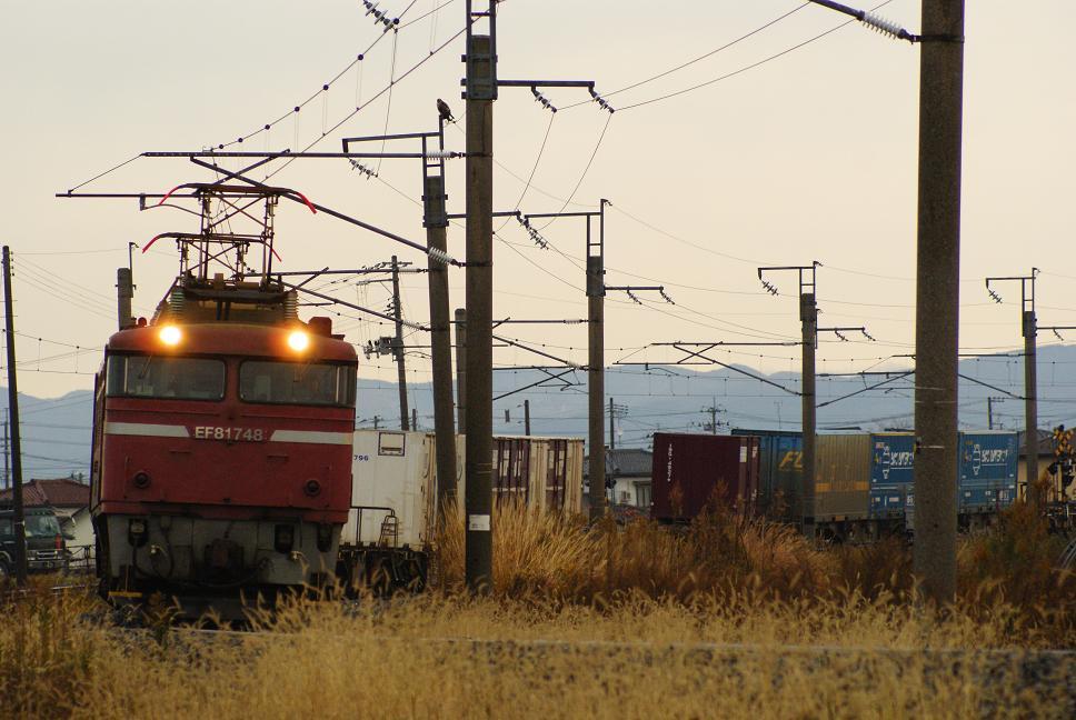 DSC09578.jpg