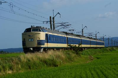 DSC09905.jpg