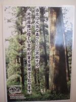 吉野材の箸