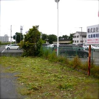 写真桑田1205-3