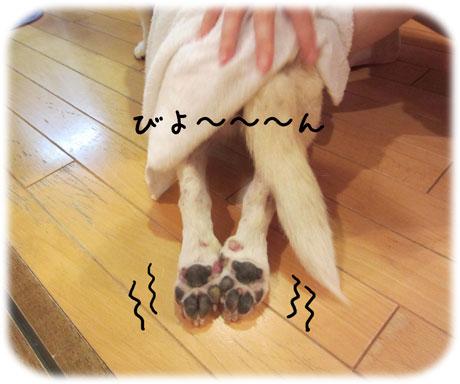 3_20110824142930.jpg