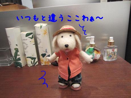4_20110821175530.jpg