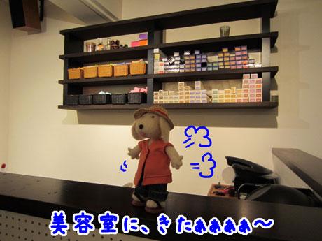 5_20110821175529.jpg