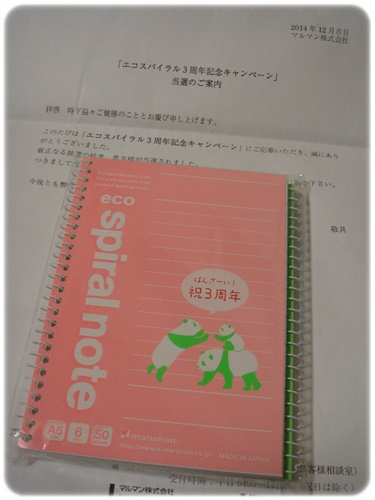 DSC03261.jpg