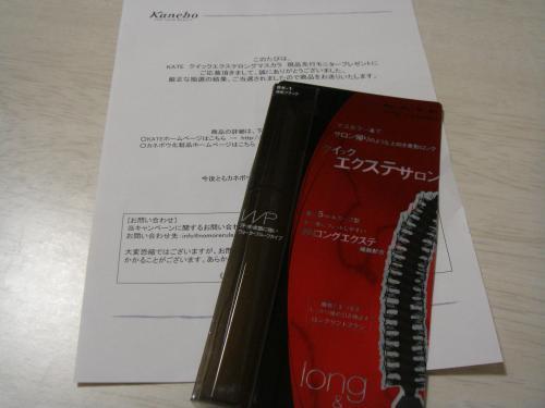 DSC09560_convert_20121011194631.jpg