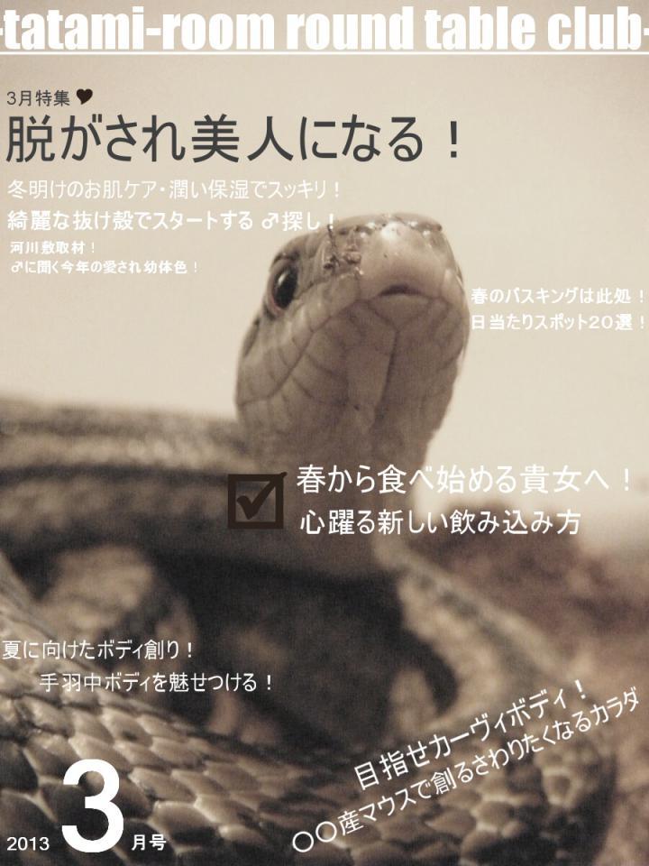 2013_0320_150131-2.jpg