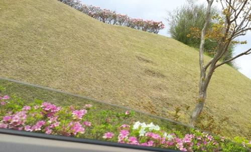 20130504_墓地公園