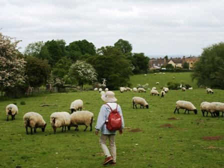 0608フット羊の中2