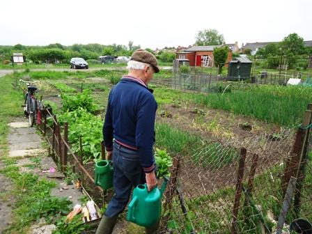 0605Oxford家庭菜園1