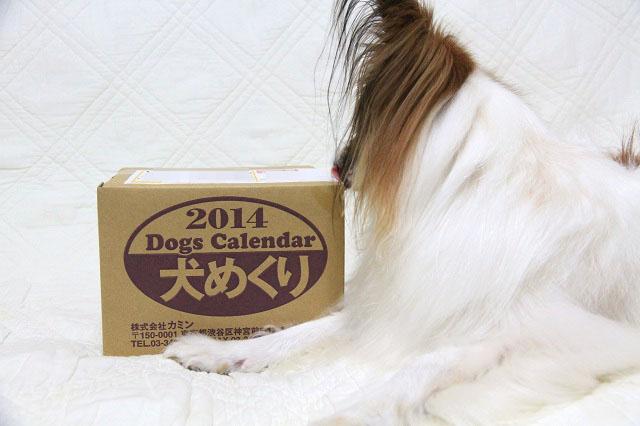 犬めくり2014_1a