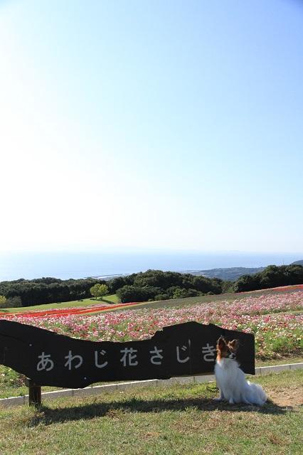 20131014_13.jpg