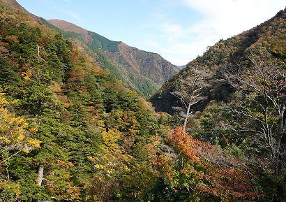 紅葉の寸又渓谷-1