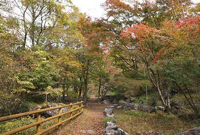 梅ケ島紅葉赤水の滝-2