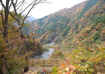 梅ケ島紅葉赤水の滝-3
