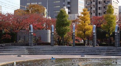 常盤公園の紅葉-1