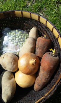 北の野菜かご
