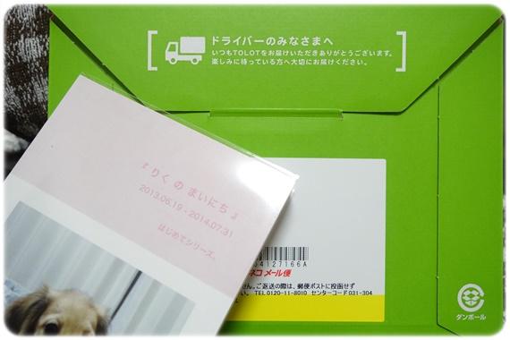 DSC01812-002.jpg