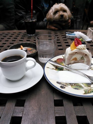 海たんとケーキ