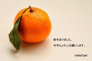 IMG_9439-001.jpg