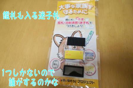 DSC01329 (1)