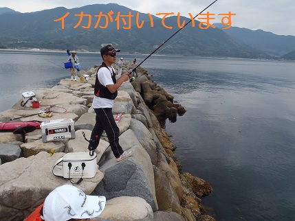 201206深江4