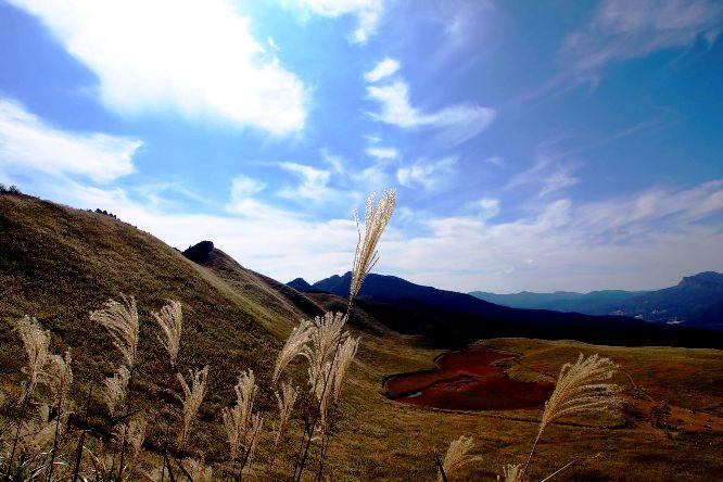 2011-10-30_0015-715ba.jpg