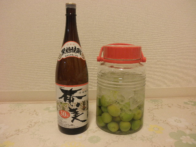 梅酒(黒糖焼酎・奄美)