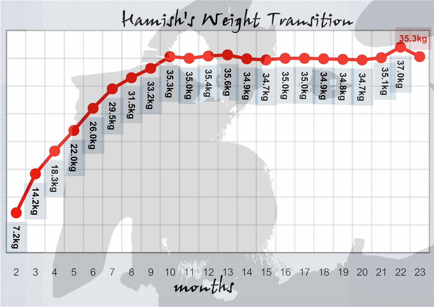 Golden Retriever 2 Months Weight rokisuke's annexothers