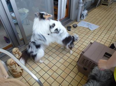 大阪合宿 2_convert_20120502132021